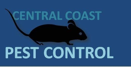 Best Pest Control Central Coast