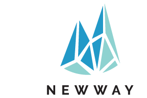 Newway Systems Pte Ltd's Logo