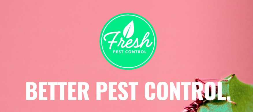 FRESH Pest Control - Best Options for Pest Control in Austin