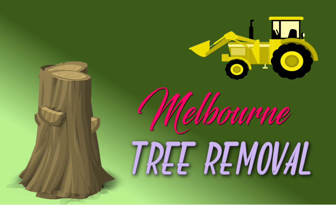 Best Tree Removal Melbourne