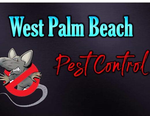 Best Pest Control in West Palm Beach