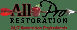 All Pro Restoration's Logo